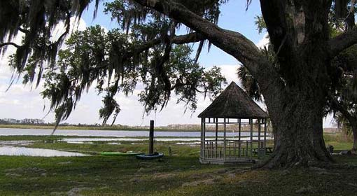 Four Airboat Tour
